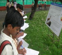 Students filling activity booklet